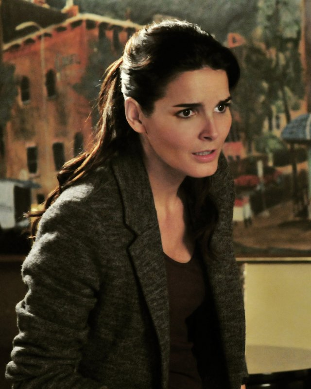 Angie Harmon stars in the TNT series 'Rizzoli and Isles' based on the popular mystery novels by Tess Gerritsen.